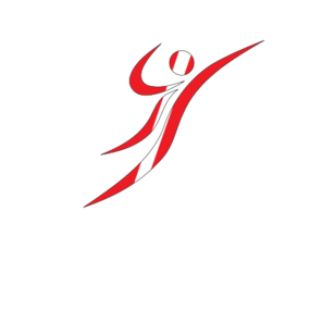 Austria handball federation - Official ball of the national teams